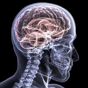 Neurologist in Brooklyn NY